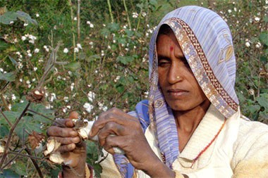 b-light-organic-clothing-cotton-women-1